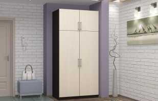 Que sont les armoires à 2 rames, conseils de sélection