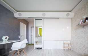 Options pour organiser les meubles dans un appartement d'une pièce, conseils de conception