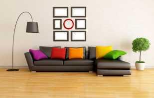 Le choix de la couleur du canapé, en tenant compte des caractéristiques de l'intérieur, des solutions populaires