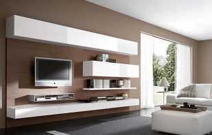 Vue d'ensemble des armoires suspendues dans le salon, nuances importantes de sélection