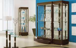 Options possibles pour les armoires du salon, avantages et inconvénients