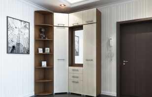 Options pour armoires d'angle pour le couloir, modèles photo