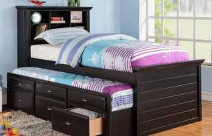 Caractéristiques de conception des lits superposés