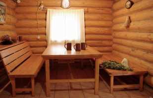 Caractéristiques des meubles dans la baignoire, modèles populaires et recommandations