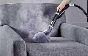 Comment éliminer une odeur désagréable d'un canapé, nettoyer avec des remèdes populaires