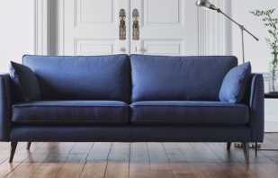 Comment choisir un canapé bleu pour l'intérieur, des combinaisons de couleurs réussies