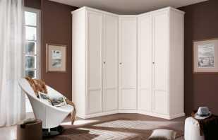 Vue d'ensemble des armoires d'angle pour la chambre et photos des options existantes