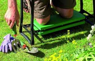 Comment faire un banc universel pour un jardin de vos propres mains