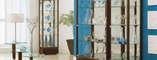 Aperçu des armoires pour plats en verre, règles de sélection