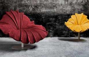 Chaises inhabituelles élégantes, une variété de formes et de designs