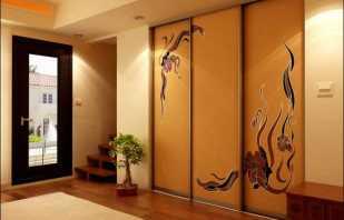 Faire des portes dans une armoire de vos propres mains, conseils utiles