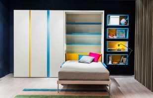 Le choix d'un lit armoire enfant, en tenant compte de l'âge de l'enfant, du design de la chambre