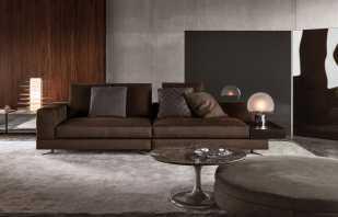 Intérieur avec un canapé marron, les règles du choix et de l'emplacement