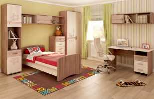 Caractéristiques des meubles pour jeunes, styles populaires, nuances importantes