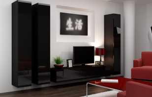 Le choix de meubles brillants dans le salon, les avantages de tels designs