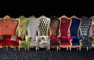 Caractéristiques d'une combinaison d'une chaise trône avec des intérieurs modernes