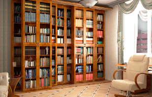 Que sont les armoires de bibliothèque, un aperçu des modèles