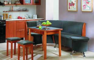 Comment choisir des meubles rembourrés dans la cuisine, un examen des modèles